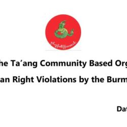 Statement of the Ta'ang Community Based Organizations on Serious Human Right Violations by the Burmese Military